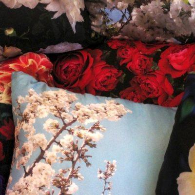 Lolly5000 Cushions